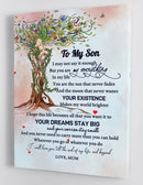 To My Son - From Mom - Framed Canvas Gift MS017