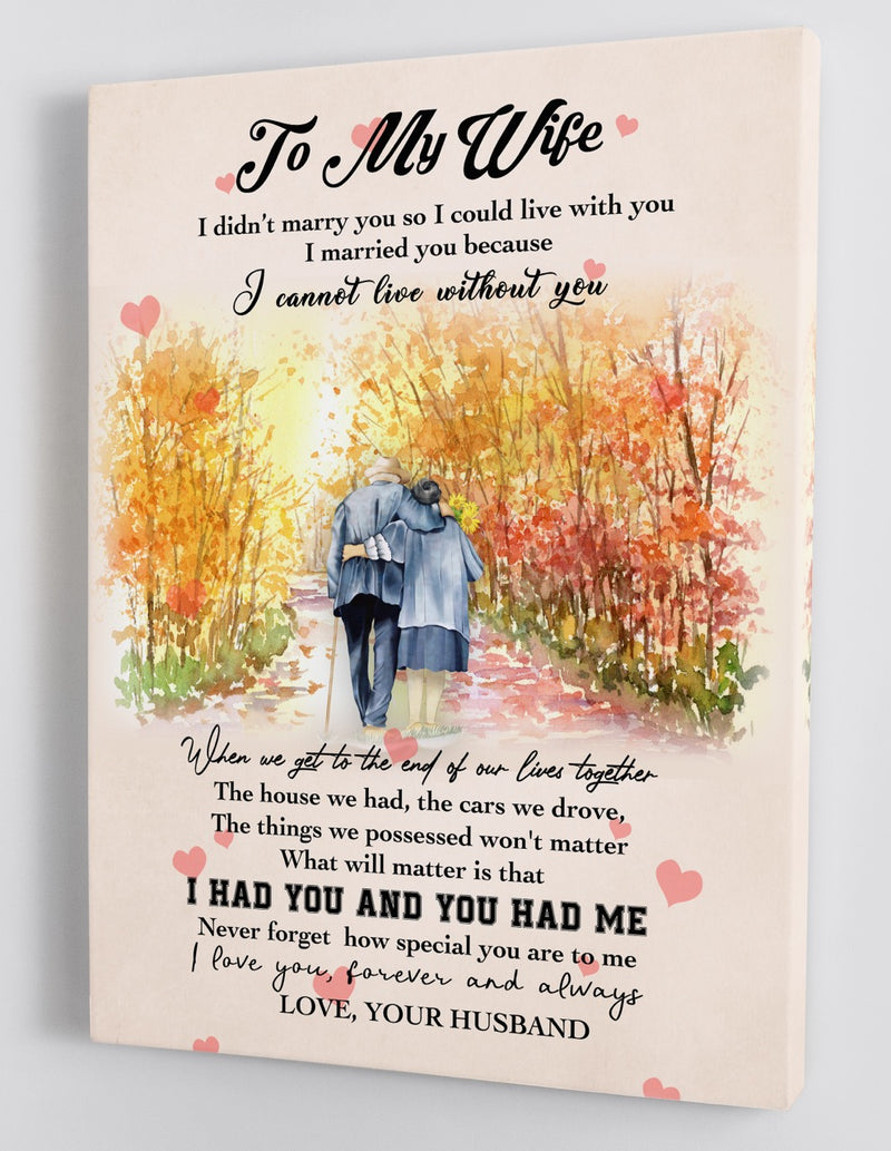 To My Wife - From Husband - Framed Canvas Gift HW003