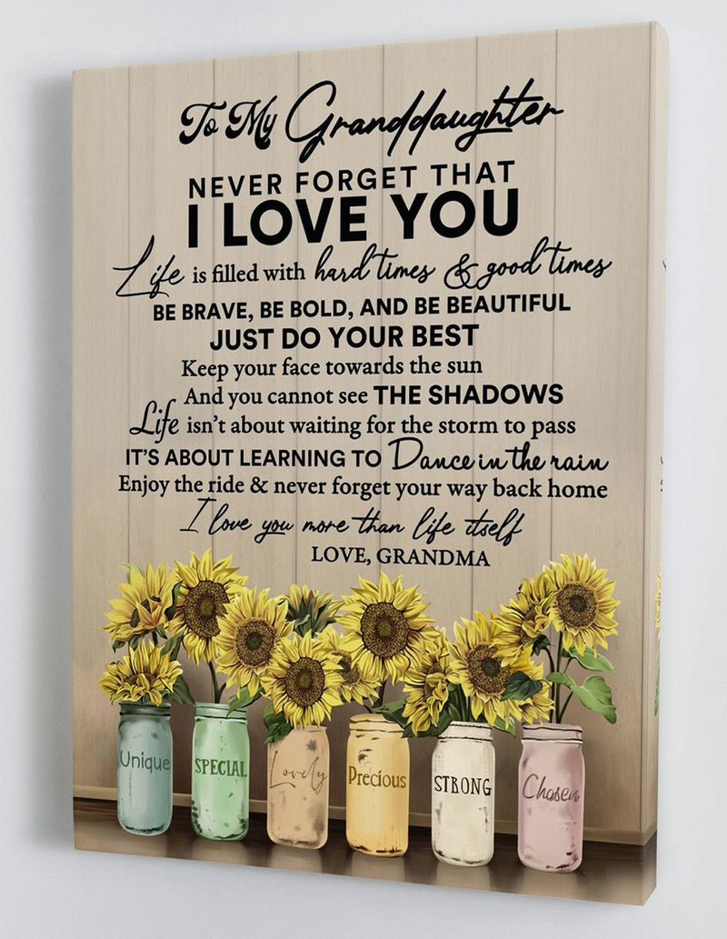 To My Granddaughter - From Grandma - Framed Canvas Gift GMD059