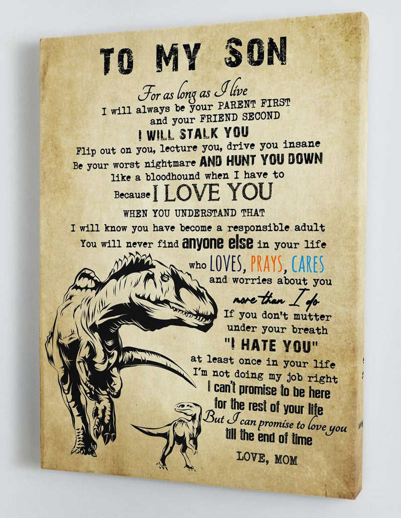 To My Son - From Mom - Framed Canvas Gift MS058