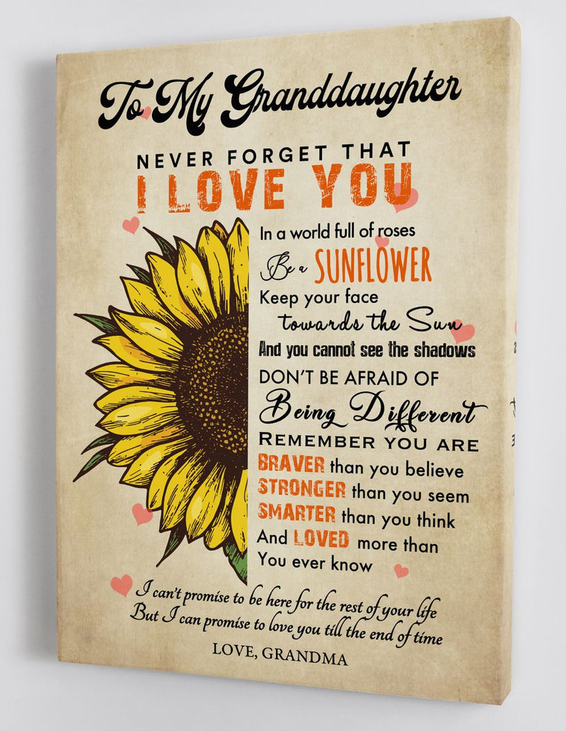 To My Granddaughter - From Grandma - Framed Canvas Gift GMD077