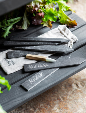 Slate Set of 6 Plant Tags