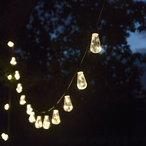 Festoon lights - squirrel 7.5m