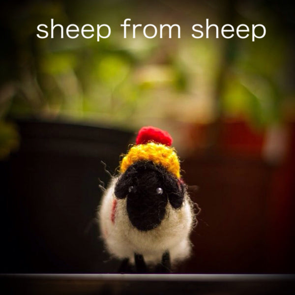 sheep from sheep