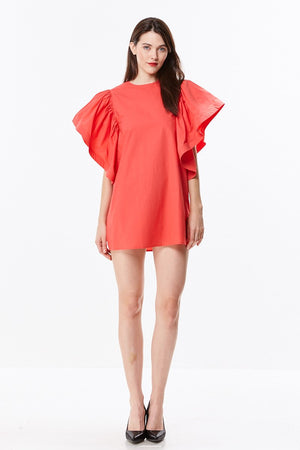 Shirt Dress with Flutter Sleeves