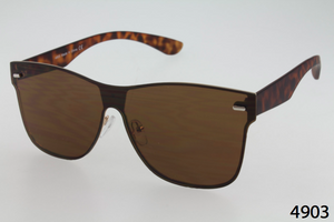 Single Lens Wayfarer Sunglasses