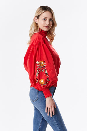 Puff Blouse with Embroidered Sleeve
