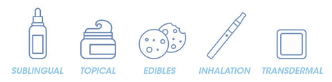 Icons showing all the different ways a person can consume CBD.  Shows sublingual, topicals, edibles, inhalation, and transdermal icons.