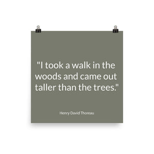 Poster Quotes - Nature -  I took a walk, H. D. Thoreau
