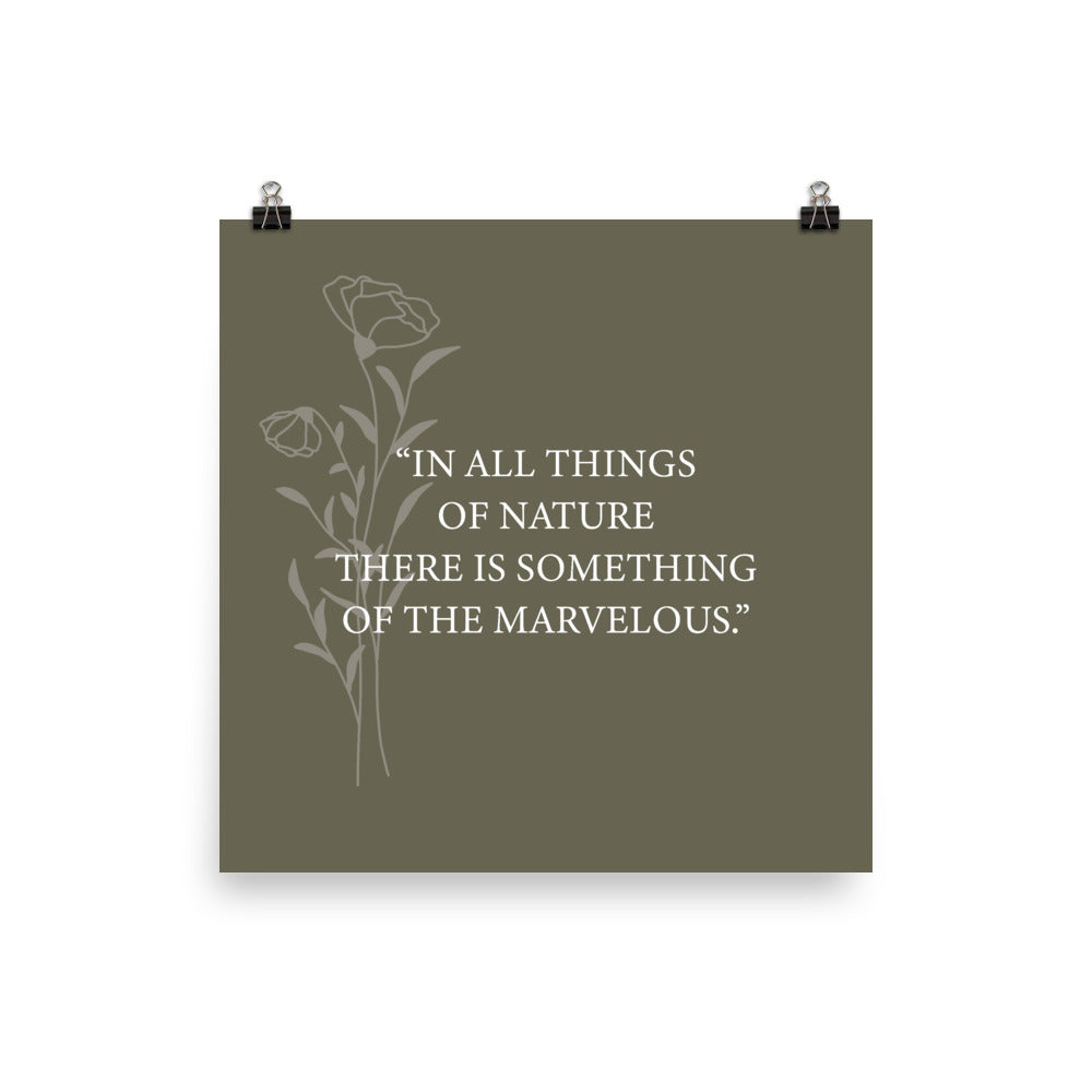 Poster - Quotes - Nature - In all things...
