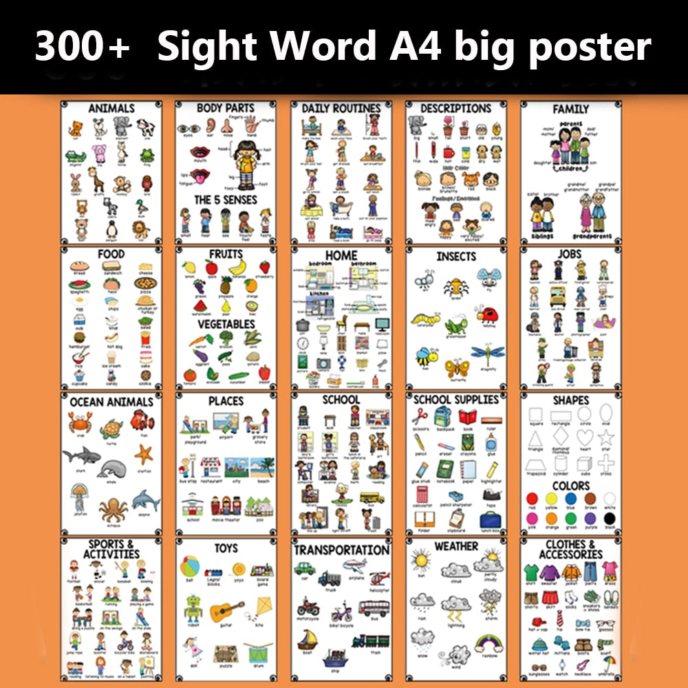 20Groups/Set A4 Size Cognition English Words Card