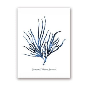 Sea Coral Posters Coastal Beach Nautical Art Canvas Painting Watercolor Blue Pictures