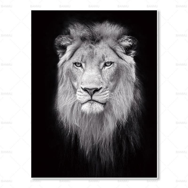 Animal Wall Art Canvas Painting