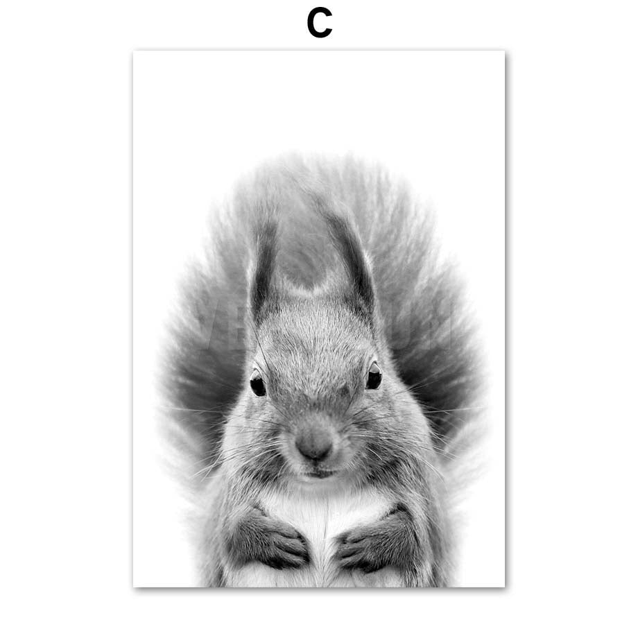 Black And White Animal Wall Art Canvas Painting - Squirrel