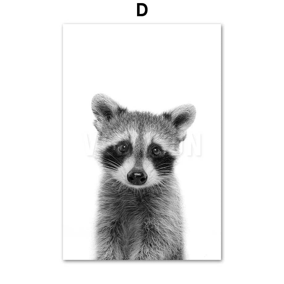 Black And White Animal Wall Art Canvas Painting - Raccoon