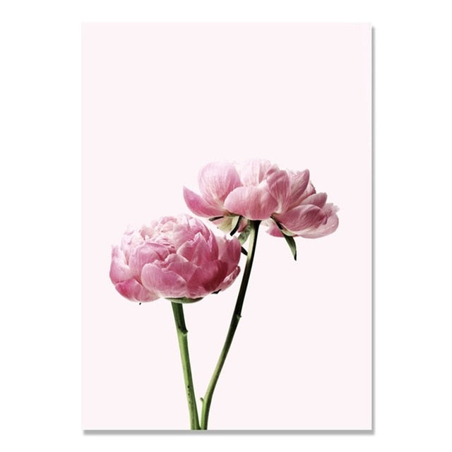 Pink Peony Flower Canvas Painting