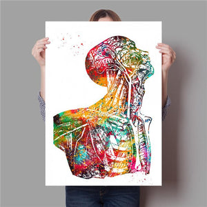 Human Anatomy Muscle System Art Print Watercolor