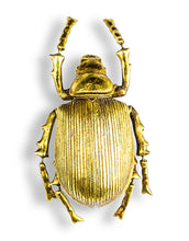 Load image into Gallery viewer, Large Gold Beetle Wall Decor