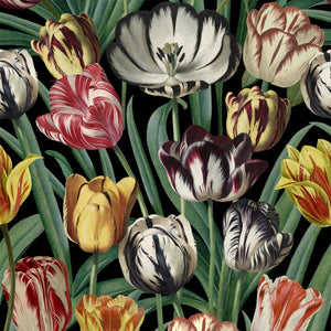 MTG Wallpaper Tulipa WP20178