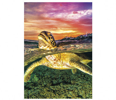 Sea Turtle Diamond Painting