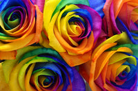 Colorful Rose Bunch Diamond Painting