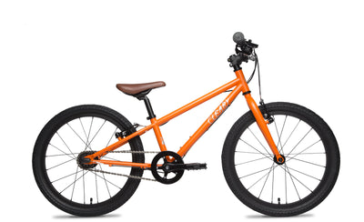 The Geared Owl is unique. The internally geared 3-speed rear hub enables your son or daughter to climb steep hills and move faster on long flats. Plus, the Owl's shifting mechanism is encased in an aluminum shell inside the rear hub. The bike will shift gears smoothly with no maintenance for thousands of miles