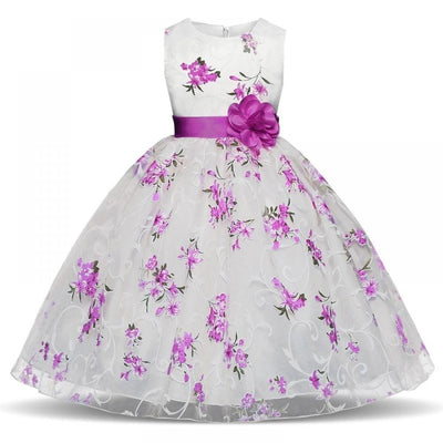 Robe Princesse Blanche Fleurs Roses