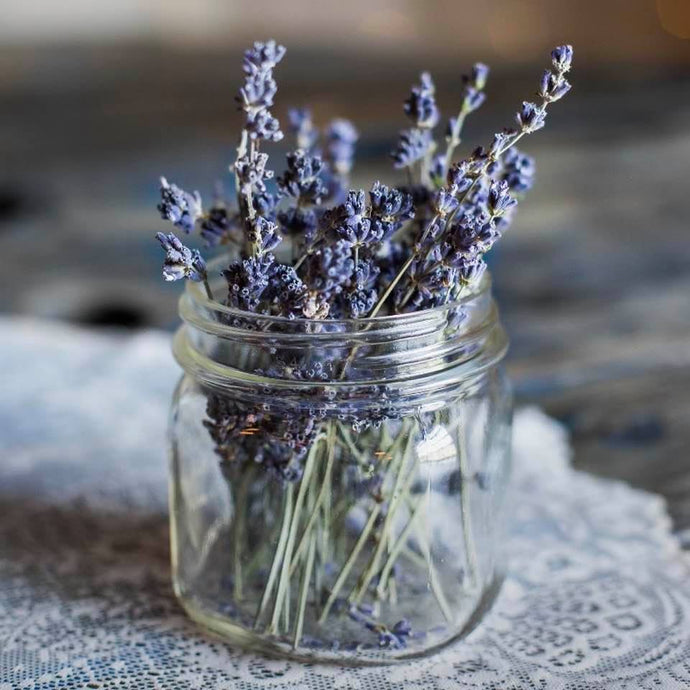 The Many Uses of Lavender Essential Oil