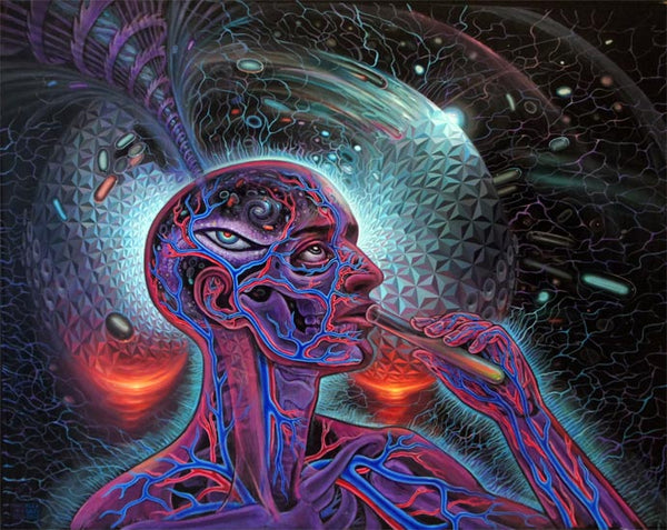 alex grey psychedelic artwork - dmt experience art