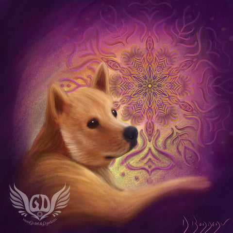 Doge mandala such wow free artwork wallpaper download