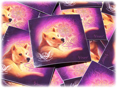 such wow doge artwork sticker print - best dog gift