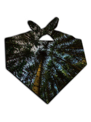 Out of the Woods Printed Bandana - GratefullyDyed - 1