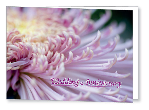 Wedding Anniversary Invite 5445 Folded - Jayceefinecards