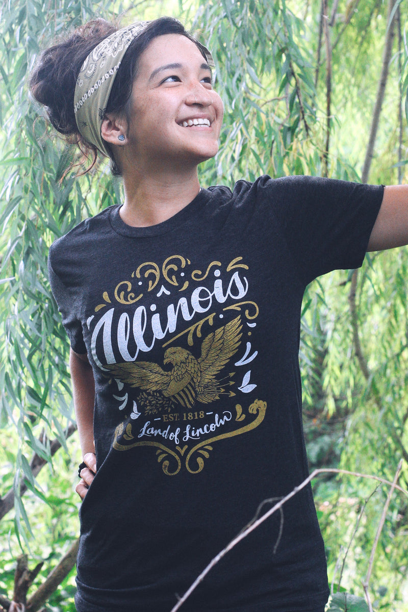 Illinois Land of Lincoln Triblend Black Unisex T-shirt