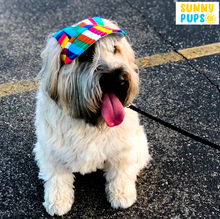 Load image into Gallery viewer, Sunny Pups™ Limited Edition Doggy Cap