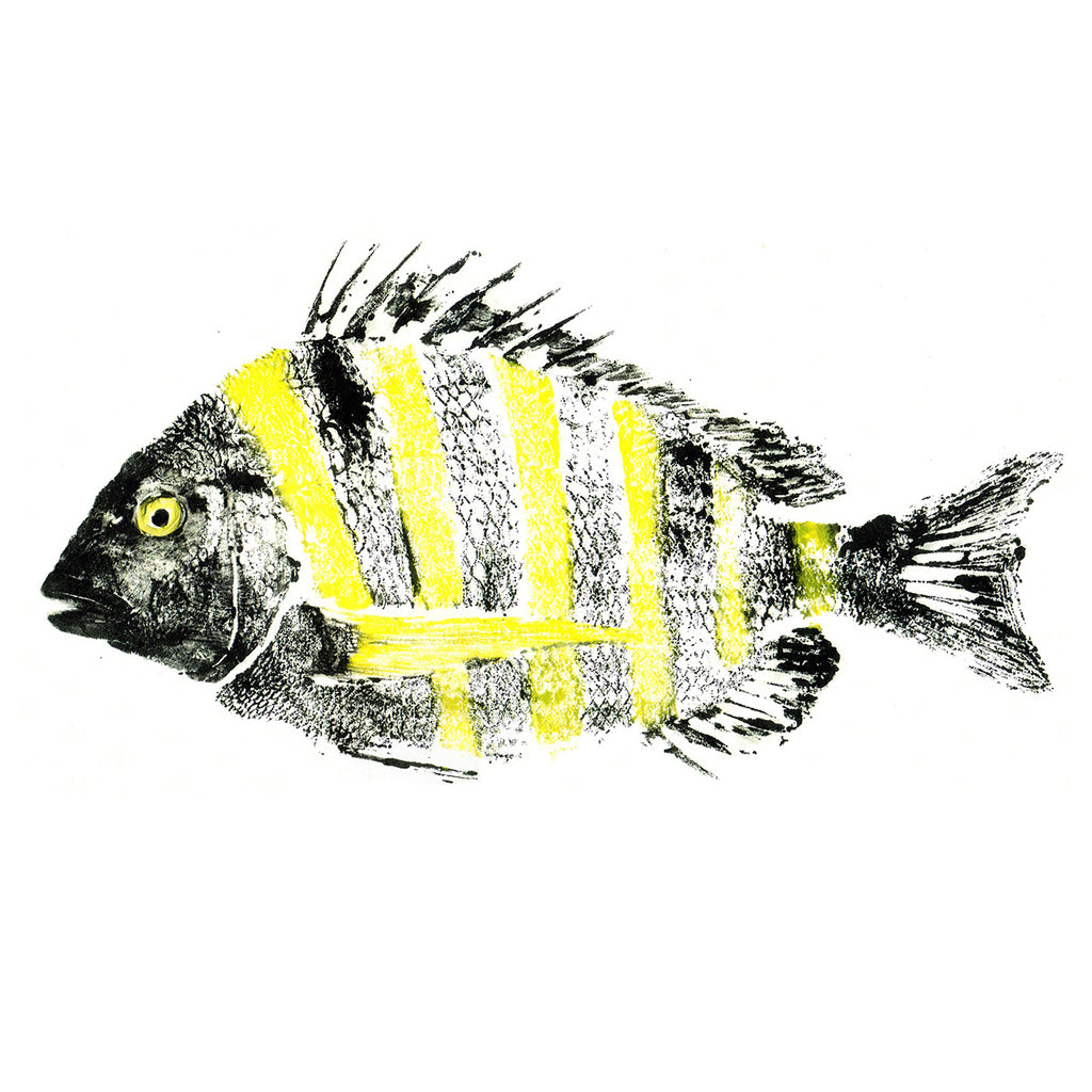 Gyotaku Fish Prints