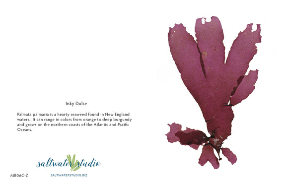Inky Dulse