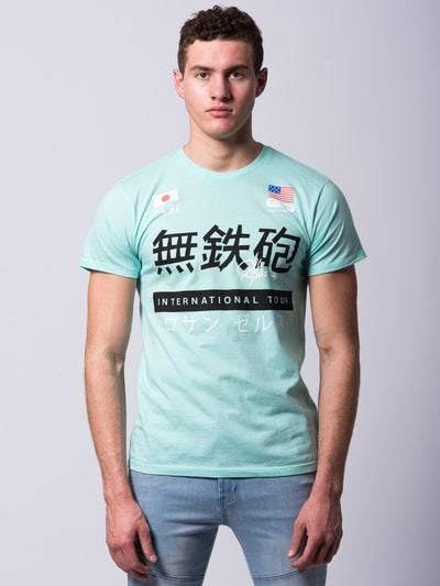 Young and Reckless Mens - Tees - Graphic Tee Norikura Tee - Ice Green
