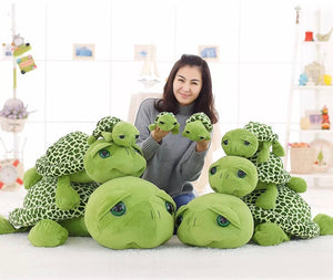 Turtle Stuffies