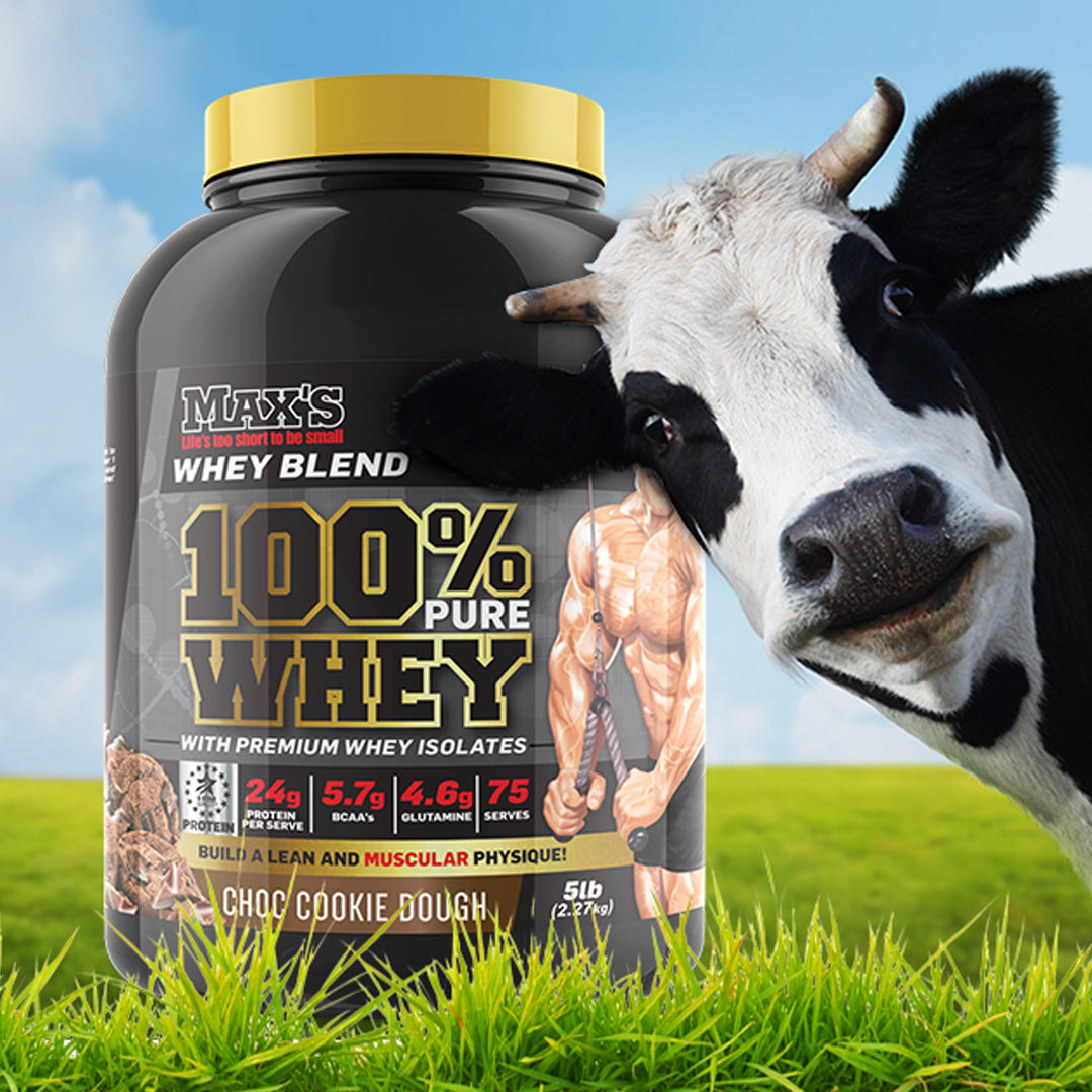 Grass Fed Vs Grain Fed Whey Protein