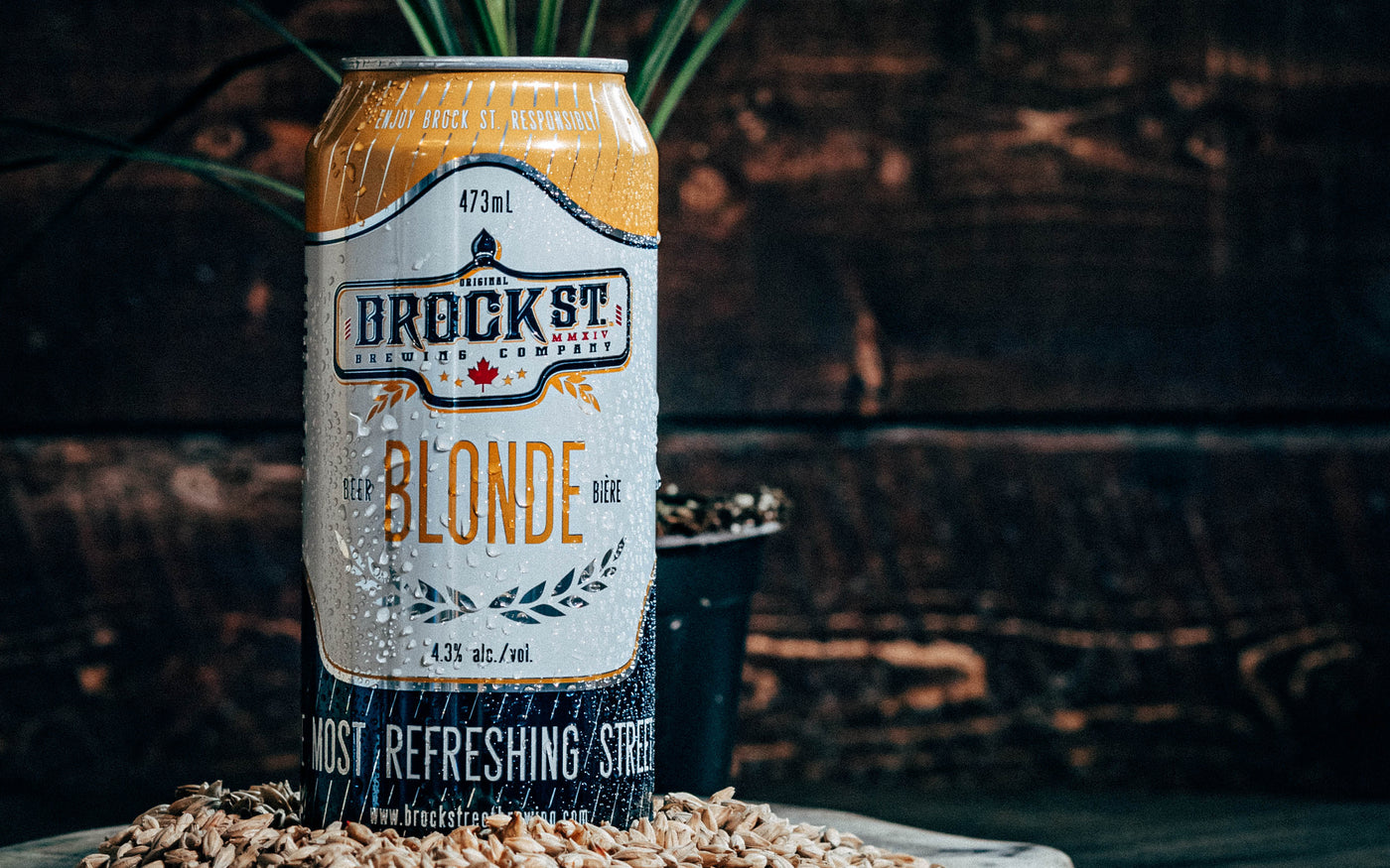 Brock Street Brewing Blonde Ale