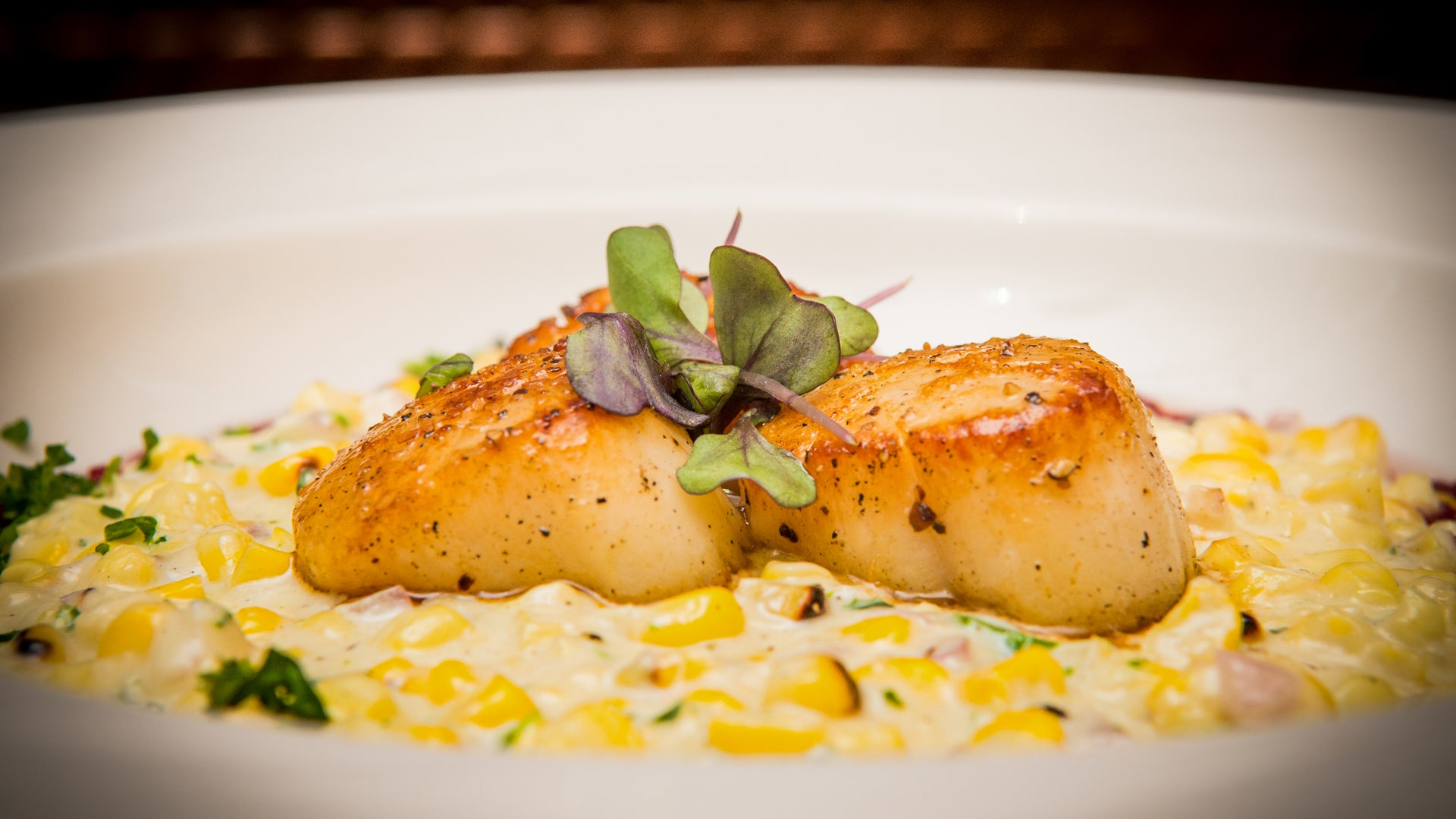 Seared Scallops with Corn Purée