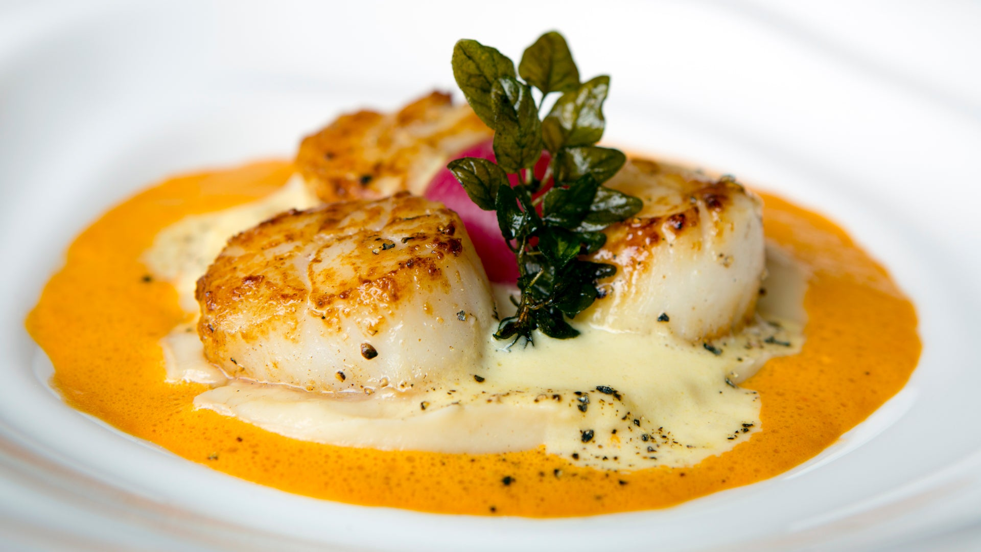 Seared Scallops With Hot Sauce Beurre Blanc