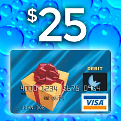 $25 Visa Debit Gift Card