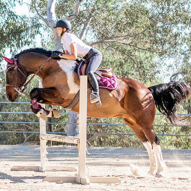 SoCal Collection Simi Jump Saddle Pad | Pre-Order