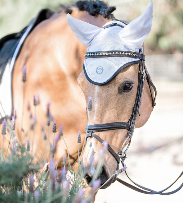 Buckskin arabian quarter horse wearing our white fly bonnet. White Dressage Bundle with Fly Veil, Polo Wraps and a Dressage saddle pad. White in color with semi shiny material.