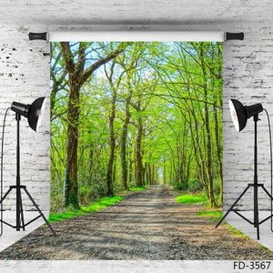 Photography Backdrops and Scenes-Walking in the Woods - WriteOnMan