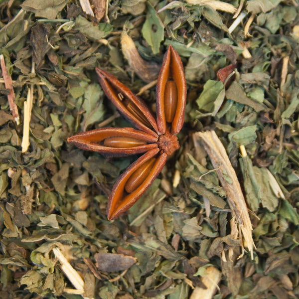 Organic Snake In The Grass-Tea-McIver's Coffee & Tea