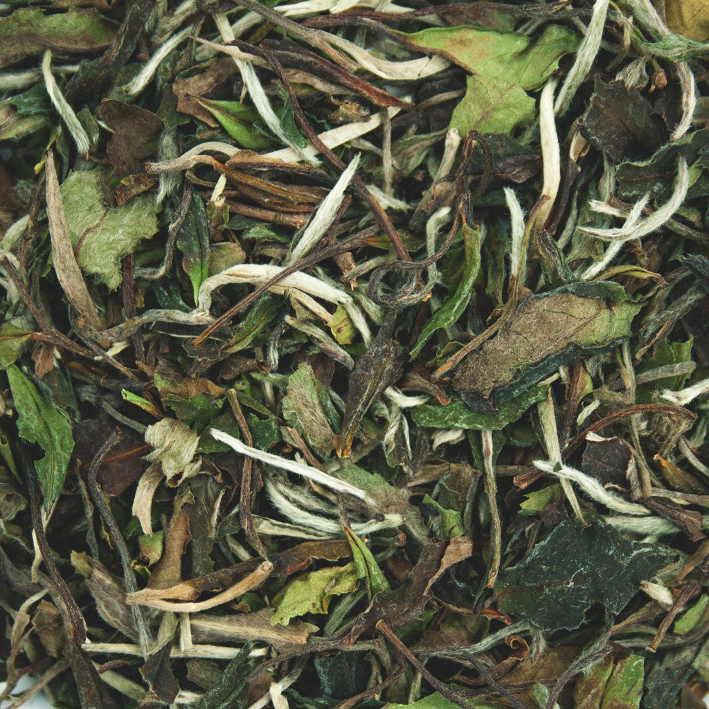 White Tea Pai Mu Tan-Tea