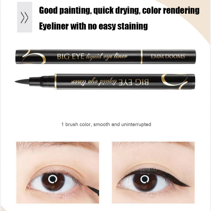 Eyeliner Liquid Pen Waterproof